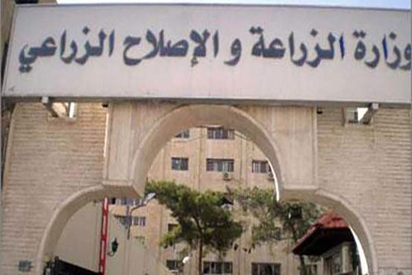 وزارة الزراعة سوريا نتائج البكالوريا الزراعية